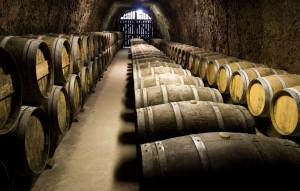 sommelier_wine_beer (1)