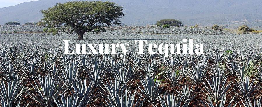 Luxury Tequila & Cocktails