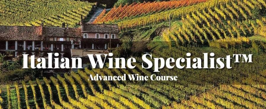 Italian Wine Specialist