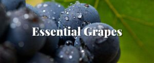 essential grapes