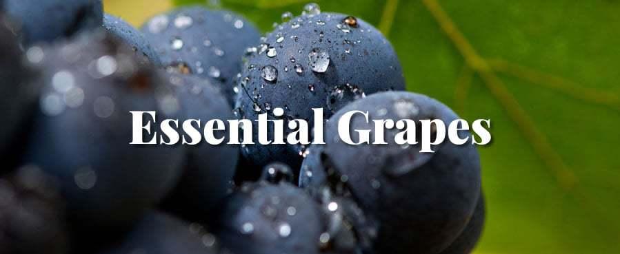 essential grapes
