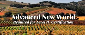 new world wine course