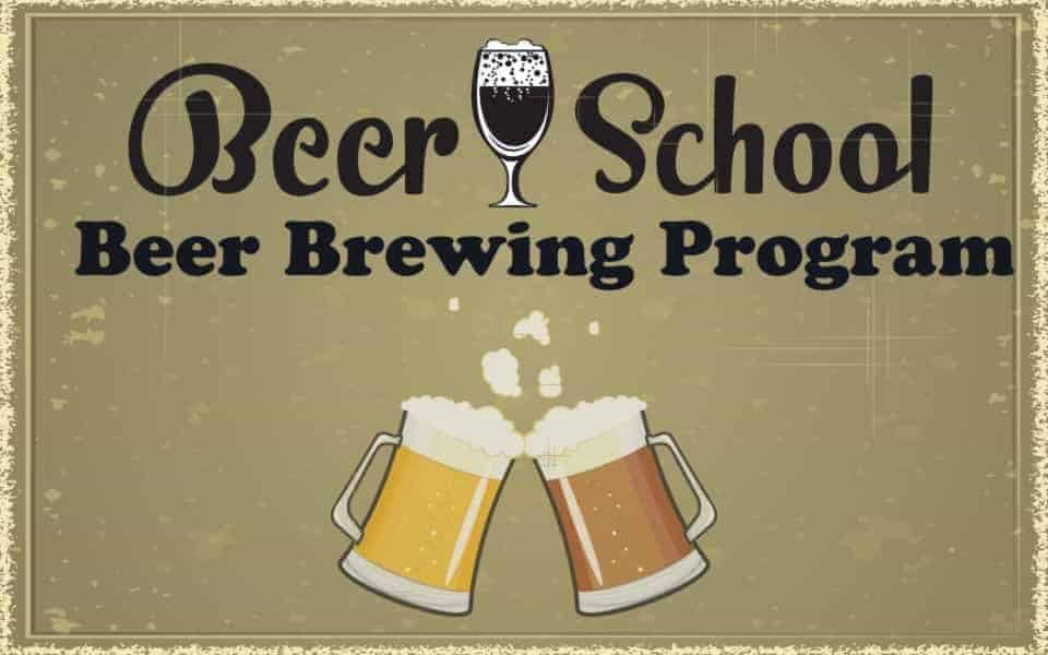 beer brewing program