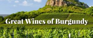 Great Wines of Burgundy