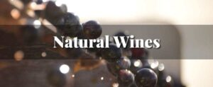 Natural Wine Class