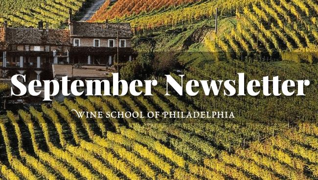Wine Newsletter