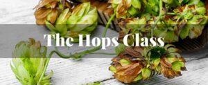 the hops class