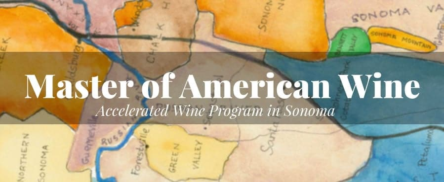 master of american wine