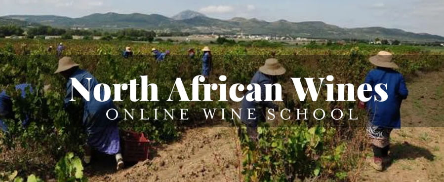 North African wines online