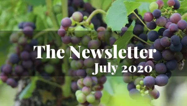 Wine School Newsletter