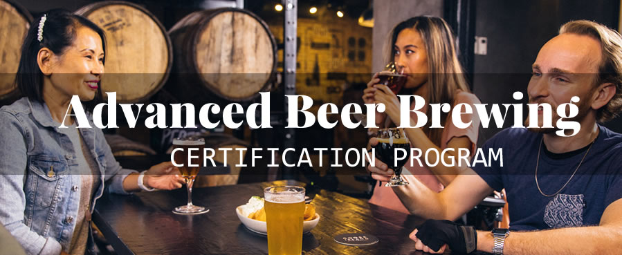 advanced beer brewing program
