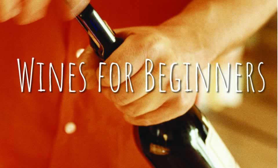 wines beginners
