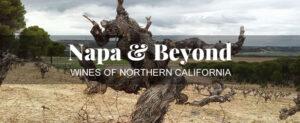 napa & beyond Tasting Classes