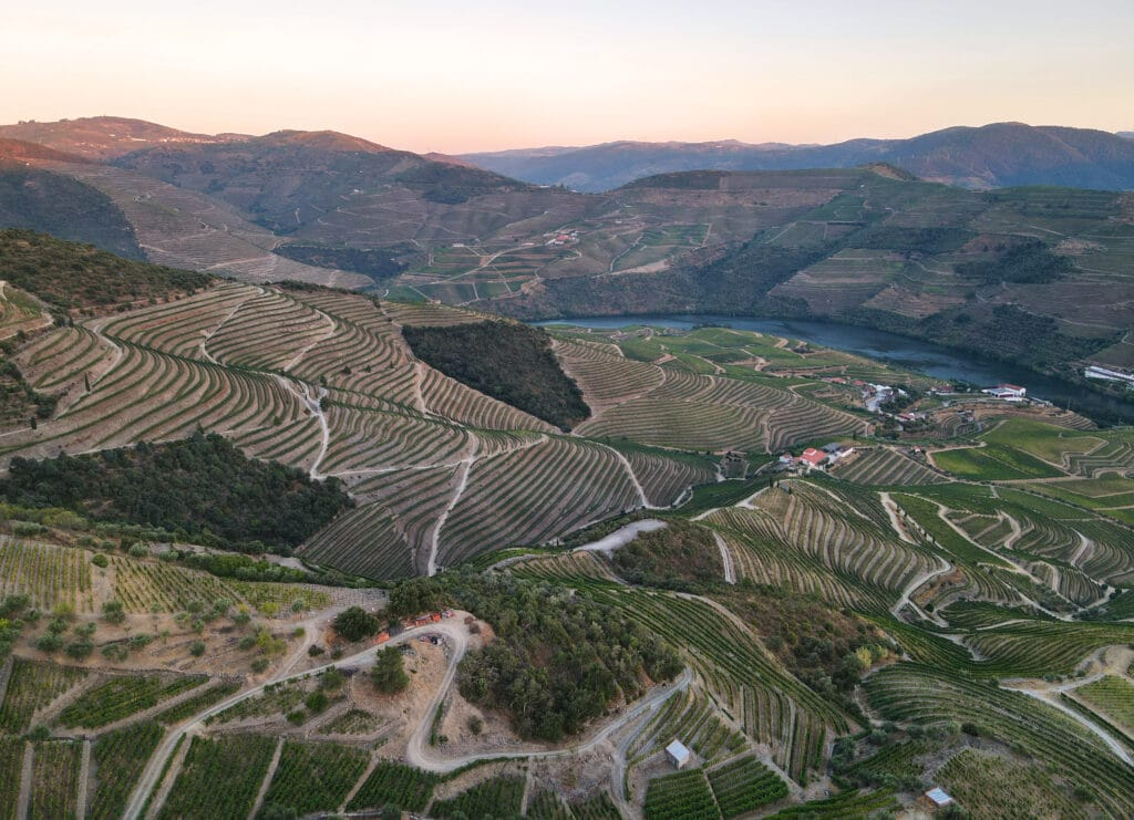 Amazing views of Douro vineyards at sunset from Casal de Loivos in Portugal