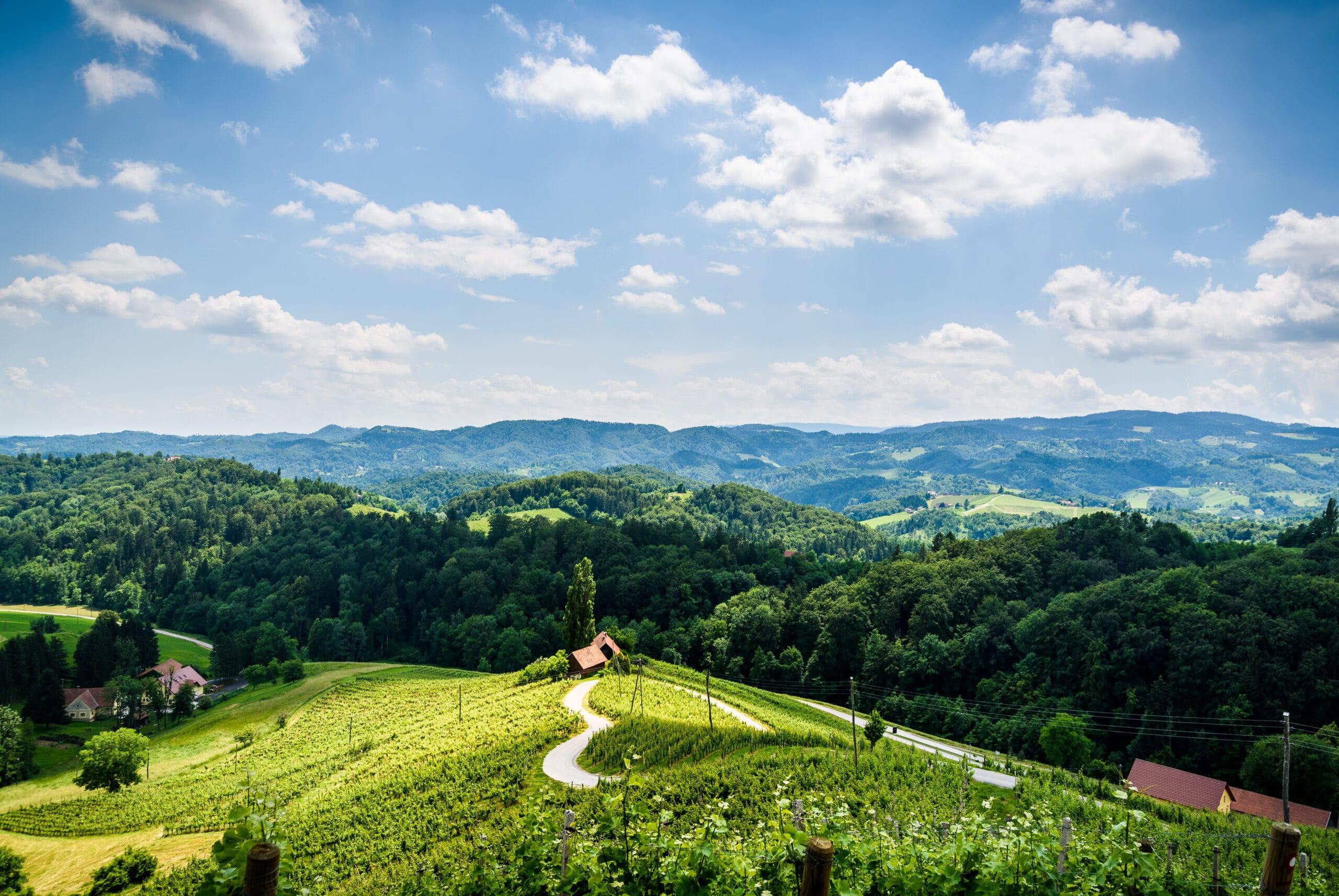 Famous Heart shaped wine road in Austria / Slovenia in summer, Heart form - Herzerl Strasse, vineyards in summer, Spicnik tourist spot