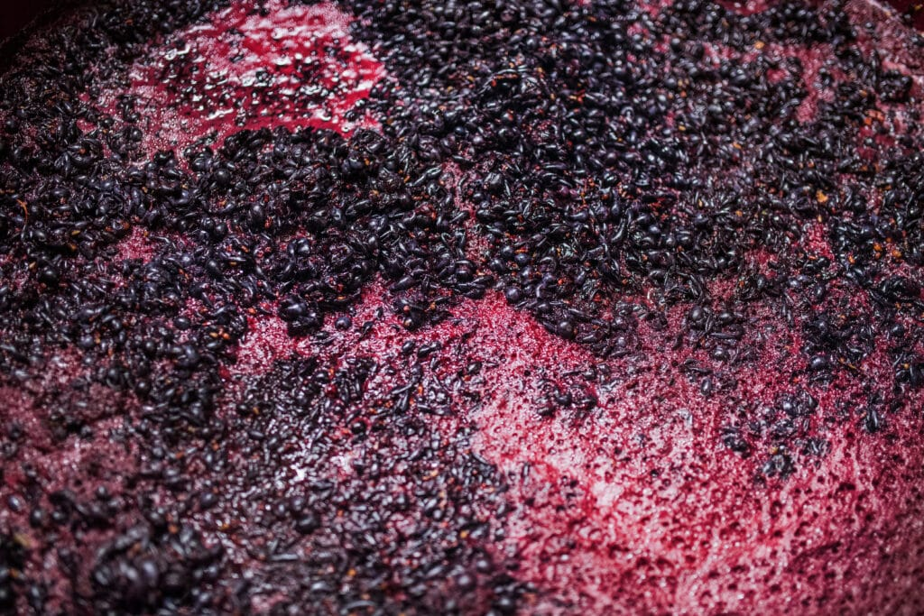 Fermentation of grape must, winemaking concept. A top view.