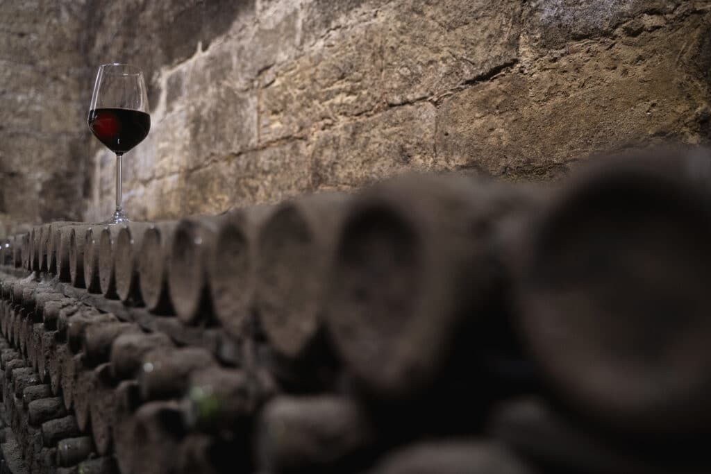 perspective view of glass with red wine on  stacked aged wine bottles ancient collection covered with soft black mold and spiderweb in  wine cellar