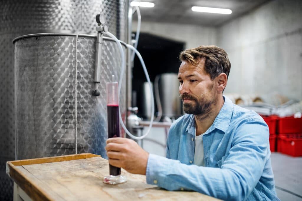 Portrait of man worker working indoors in cellar, wine making concept.